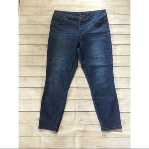 D. Jeans | Medium Wash Skinny Jeans